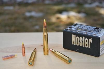 Bullets Hudson hand-loaded for this hunt.