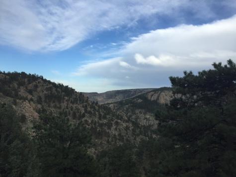 Colorado Scouting