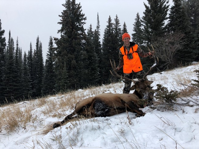 Aaron P - Bull Elk Nov 3, 2019(3)